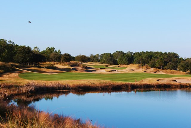 Golf course: Barefoot Fazio, North Myrtle Beach