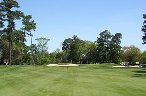 Golf course: Witch Golf Links, East Conway