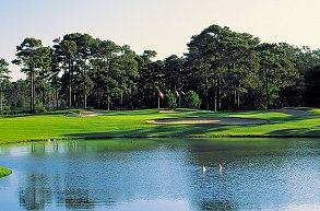 Golf course: Eagle Nest, Little River